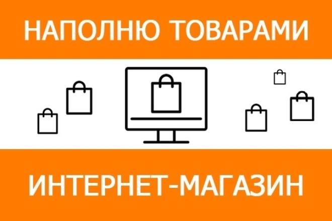Наполнение сайта товарами 1 - kwork.ru