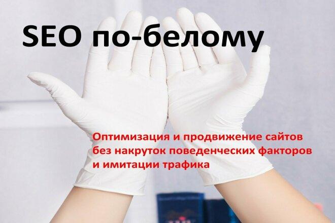 Белая seo-оптимизация сайтов с коррекцией после переиндексации 1 - kwork.ru