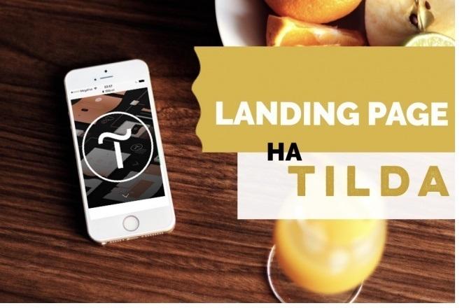 Разработка Landing Page на Tilda 4 - kwork.ru