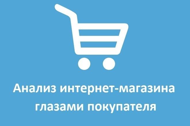 Аудит интернет-магазина глазами пользователя 1 - kwork.ru