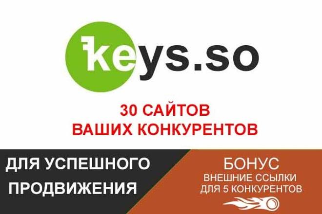 Все важные данные 30-ти конкурентов из Keys. so + букварикс 1 - kwork.ru