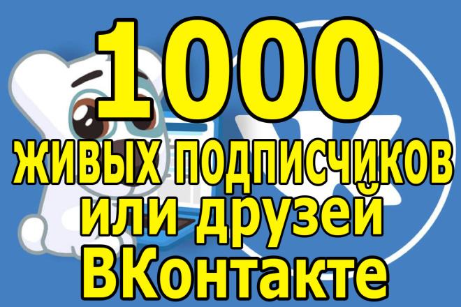 1000 живых участников в группу или друзей в социальной сети вконтакте 1 - kwork.ru