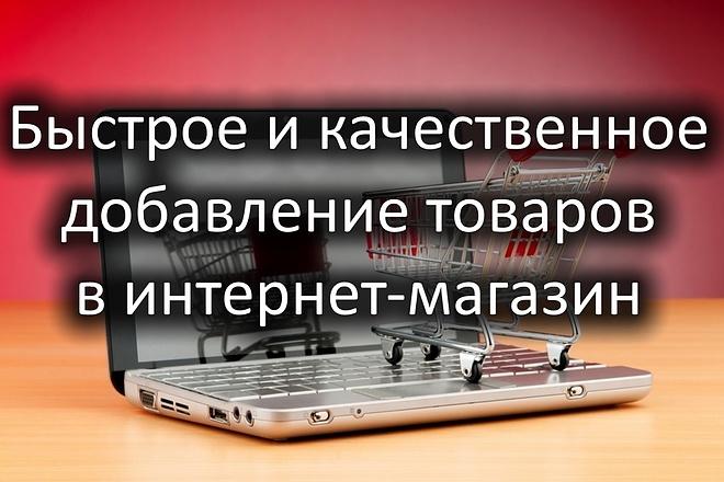 Добавление товаров в интернет-магазин 1 - kwork.ru