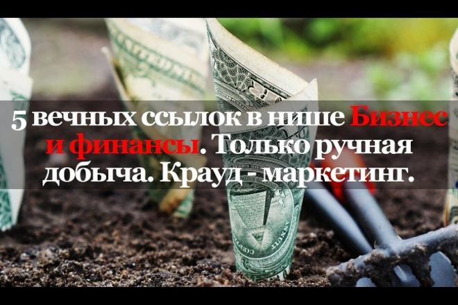 5 ссылок в нише Бизнес и финансы. Ручная работа. Крауд-маркетинг 1 - kwork.ru