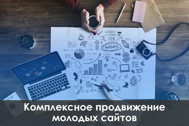 Комплексное продвижение молодых сайтов 1 - kwork.ru