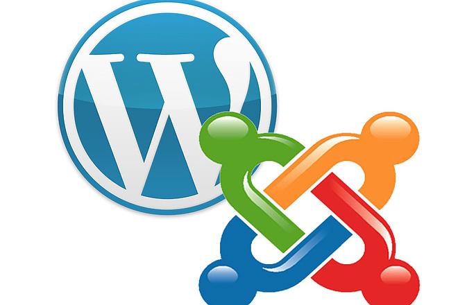 Лендинг под ключ на CMS WordPress или Joomla 4 - kwork.ru