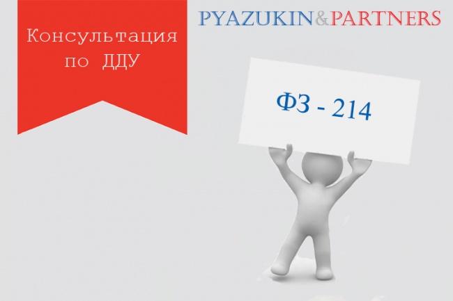 Консультация по ДДУ 1 - kwork.ru