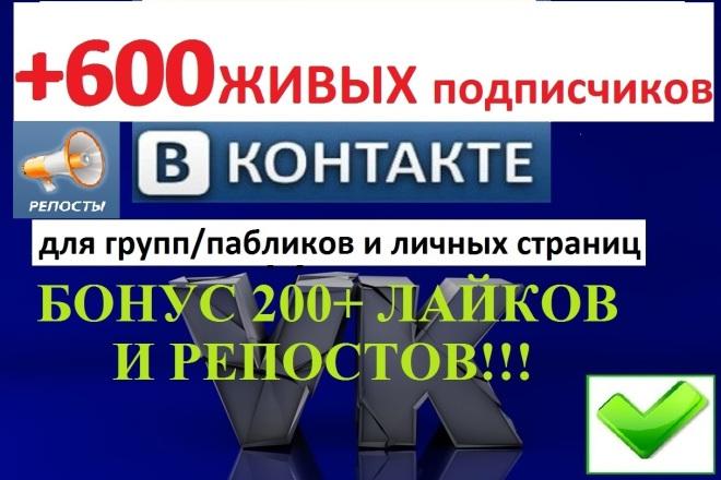 Продвижение группы Вконтакте + 600 подписчиков в группу + бонус 1 - kwork.ru