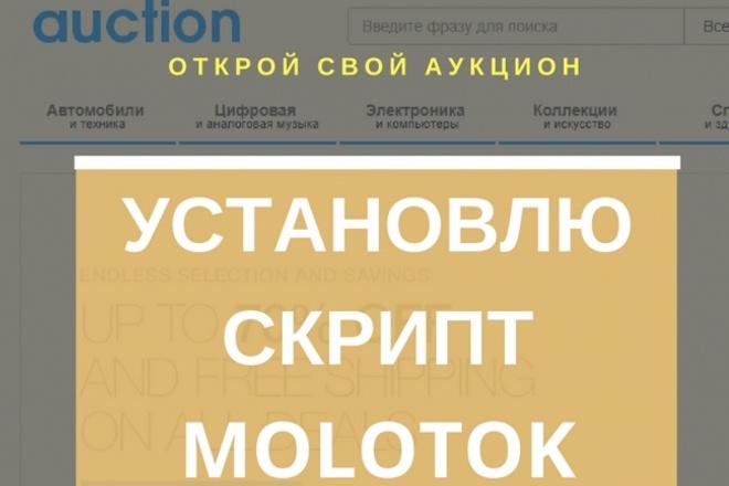 Помогу установить скрипт аукциона Molotok 1 - kwork.ru