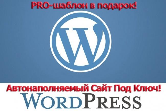 Создам автонаполняемый сайт на WordPress, Pro-шаблон в подарок 42 - kwork.ru