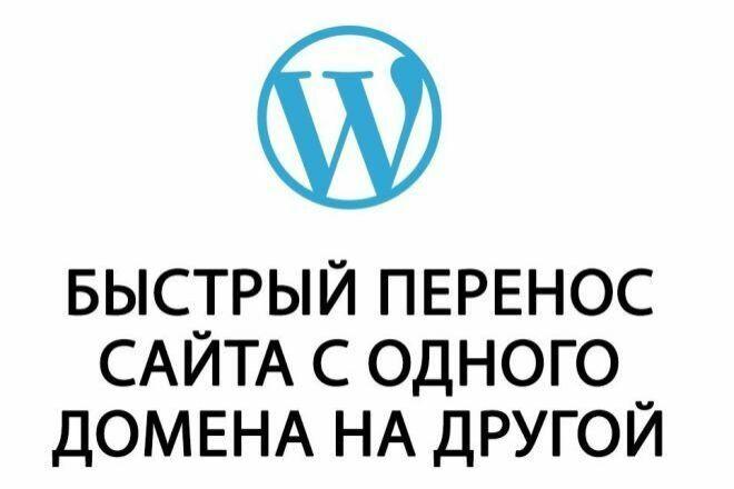 Грамотный перенос сайта WordPress на новый домен 1 - kwork.ru
