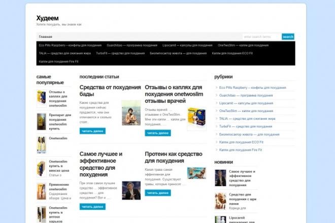 Скрипт для автонаполнения wordpress блога контентом для CPA партнерок 1 - kwork.ru