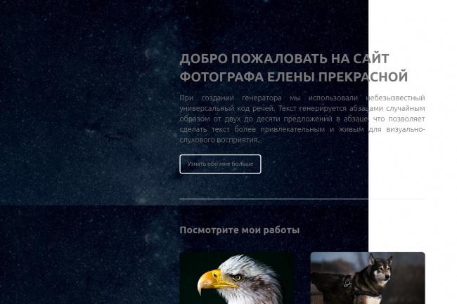 Создание продающих Lаnding Page посадочной страницы для Вашего бизнеса 6 - kwork.ru