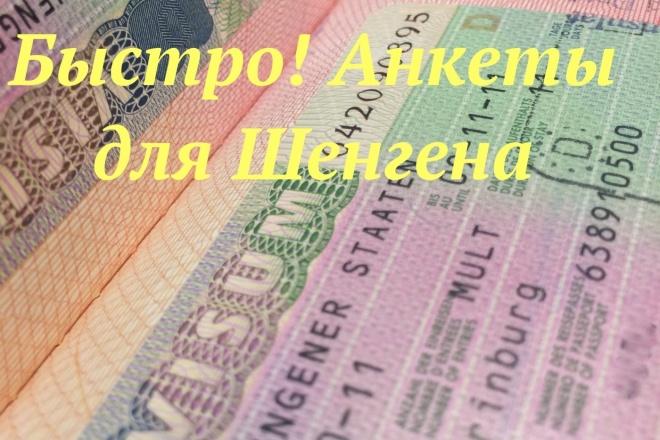Анкета в Шенген, корректировка документов, сопутствующие вопросы 1 - kwork.ru