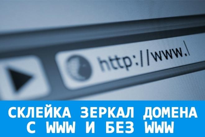 Сделаю склейку зеркала домена 1 - kwork.ru
