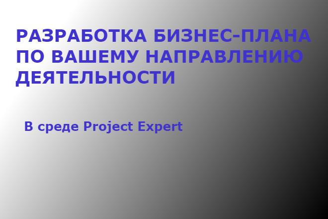 Разработка бизнес плана, проведение финансово - экономического анализа 1 - kwork.ru