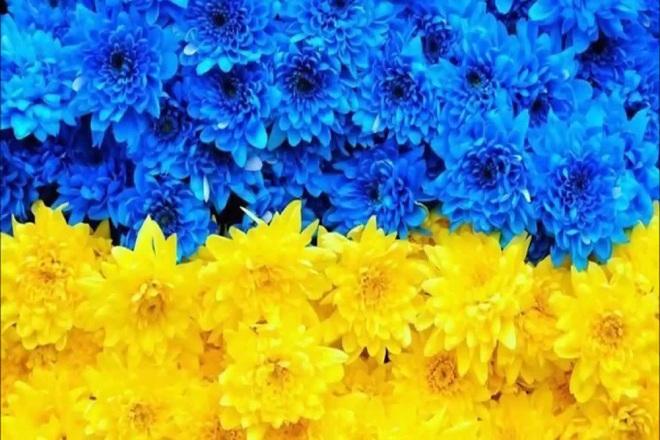 20 ссылок на украинских форумах 1 - kwork.ru