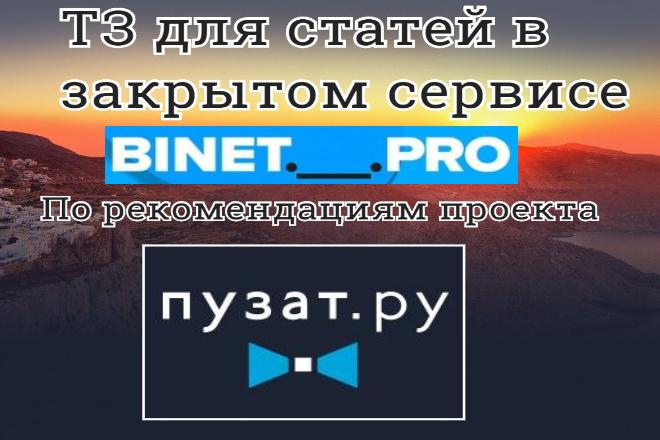 ТЗ для статей в закрытом сервисе TZ. Binet. Pro по Пузат. ру 1 - kwork.ru