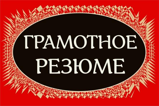 Составлю грамотное резюме 1 - kwork.ru