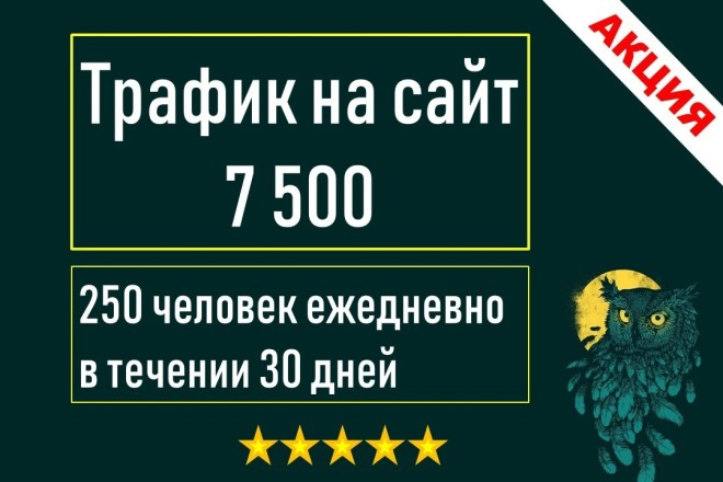 Качественный поисковый трафик на сайт из России 1 - kwork.ru