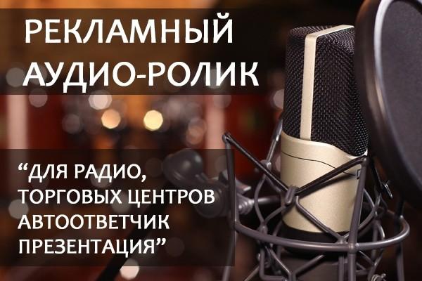Профессиональная дикторская озвучка. Реклама, Презентация 1 - kwork.ru