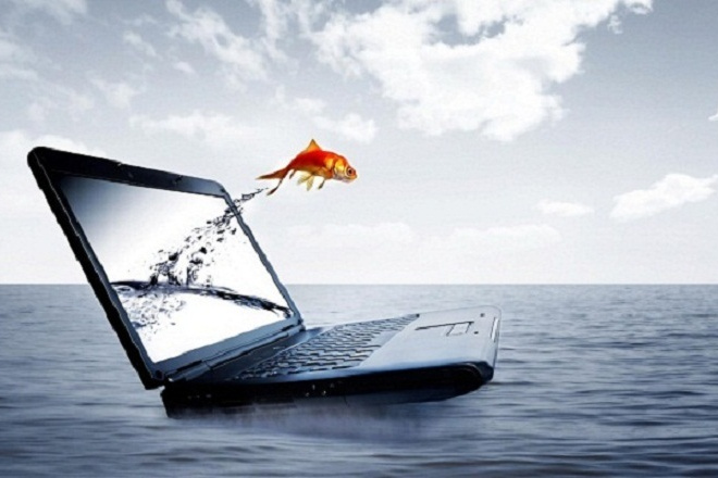 SEO оптимизация сайтов. Продвижение в яндекс, гугле, вывод в ТОП 1 - kwork.ru