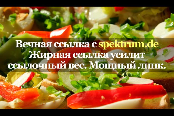 Мощная ссылка с сайта spekt rum.de 1 - kwork.ru
