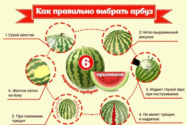 Нарисую инфографику 40 - kwork.ru