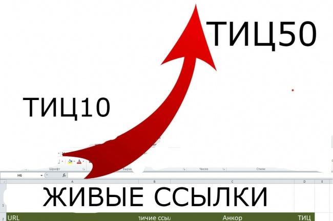 Размещение 300 вечных ссылок на трастовых сайтах с ИКС 10 и больше 1 - kwork.ru
