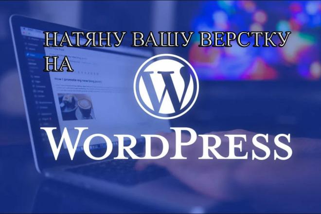 Натяну вашу верстку на Wordpress 4 - kwork.ru