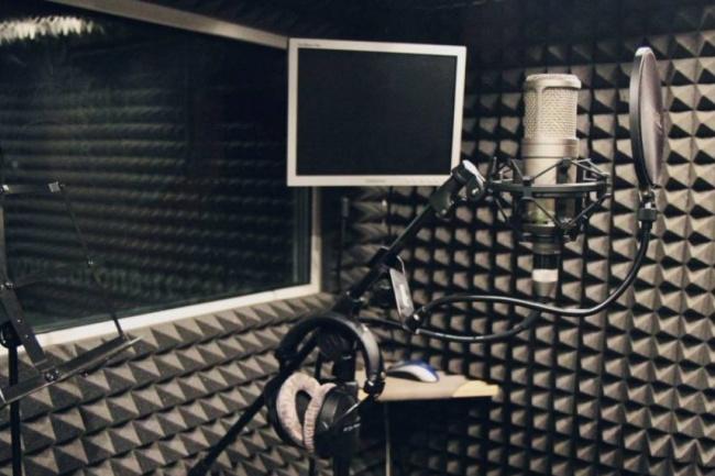 Создам аудио ролик 1 - kwork.ru