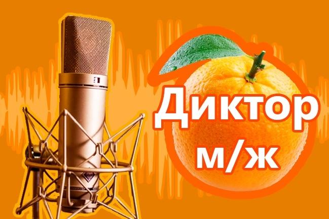 Озвучка текста диктором + музыка 1 - kwork.ru