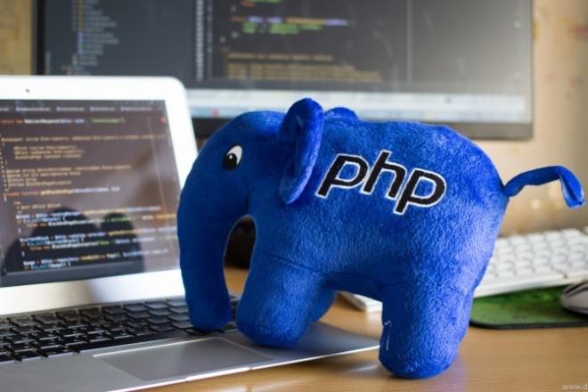 Напишу небольшой скрипт на PHP 1 - kwork.ru