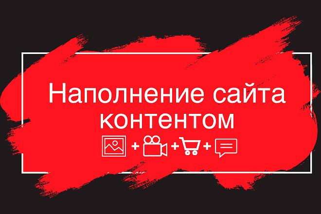 Наполнение сайта контентом 1 - kwork.ru