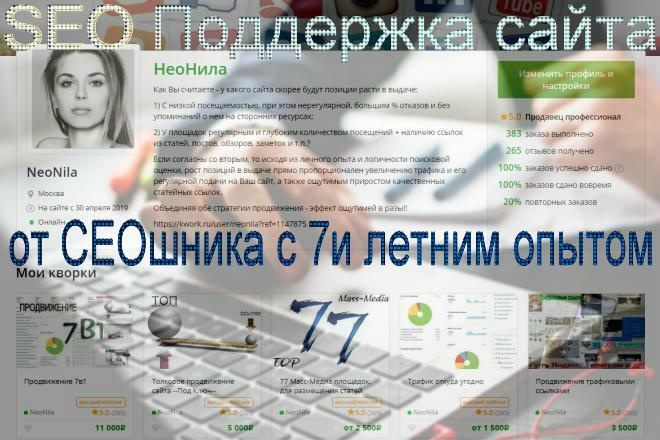 SEO Поддержка сайта 1 - kwork.ru