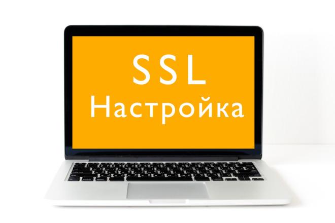 Установка SSL сертификата на WordPress 1 - kwork.ru