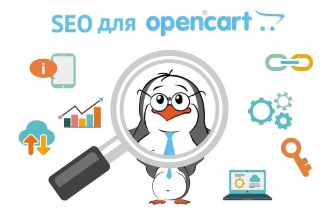 Обучение SEO на основе Вашего магазина на Opencart 1 - kwork.ru