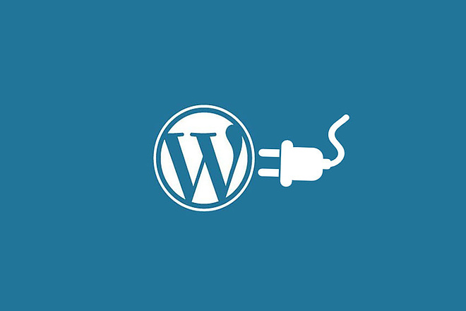 Разработаю плагин для Wordpress 1 - kwork.ru