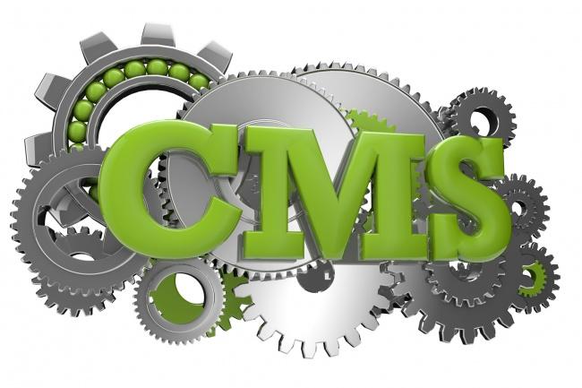 Установка CMS 1 - kwork.ru