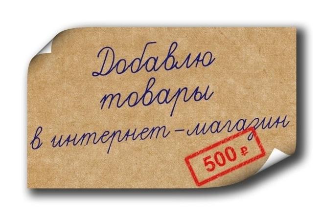 Заполню 30 карточек товаров для вашего интернет-магазина 1 - kwork.ru