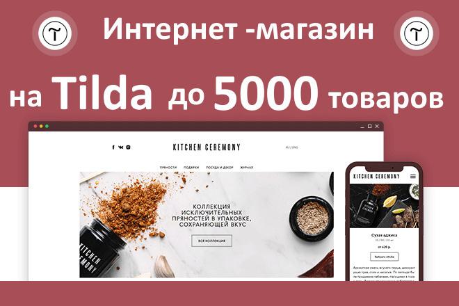 Интернет-магазин на Тильда под ключ 18 - kwork.ru