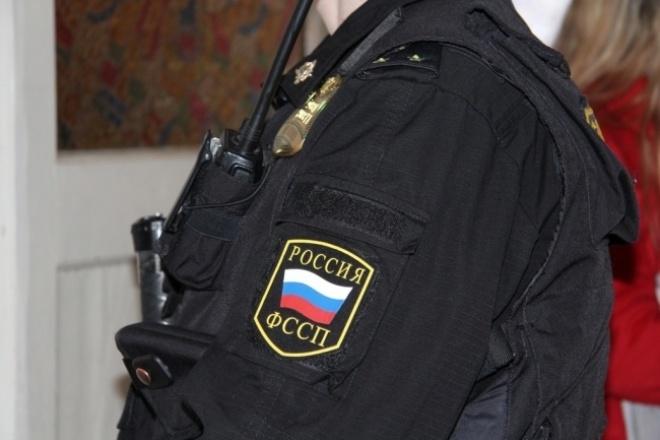 Юридическая защита от действий и бездействия приставов 1 - kwork.ru