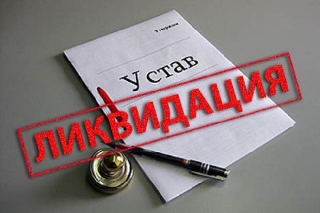 Проконсультирую по ликвидации ООО, ИП 1 - kwork.ru
