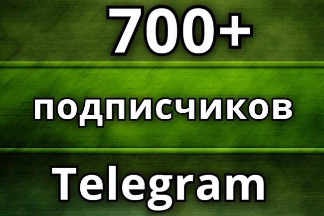 700 подписчиков на Ваш канал в Telegram 1 - kwork.ru
