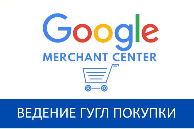 Ведение Гугл Покупки Google Merchant - 30 дней + аудит 1 - kwork.ru