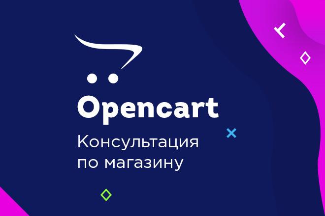 CMS Opencart. Консультация магазина 1 - kwork.ru