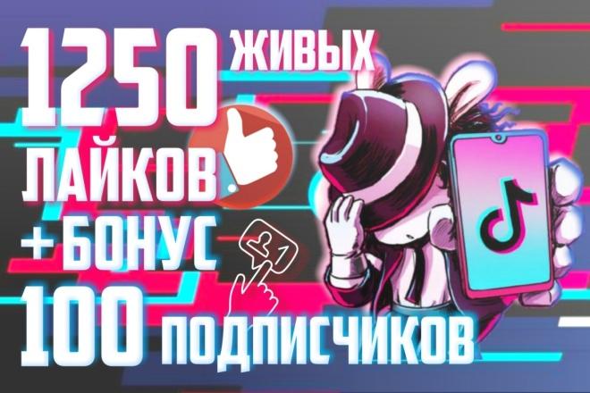 Обеспечу 1250 лайков от живых людей на Ваши видео в Tik Tok +Бонус 1 - kwork.ru
