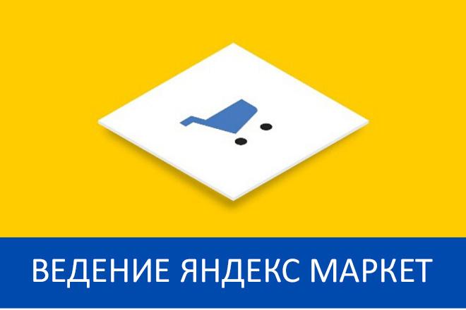 Ведение Яндекс Маркет - 30 дней + аудит 1 - kwork.ru