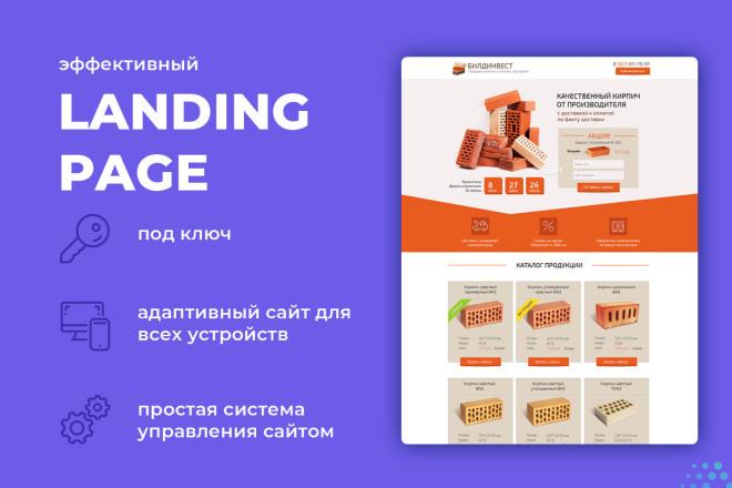 Создание Landing page под ключ фото