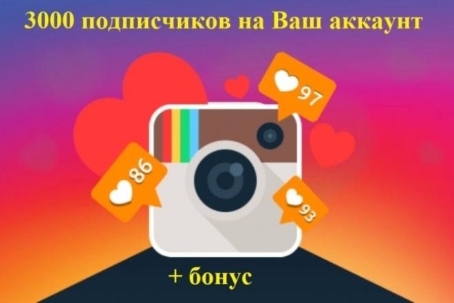 3000 подписчиков в Instagram + бонус 1 - kwork.ru